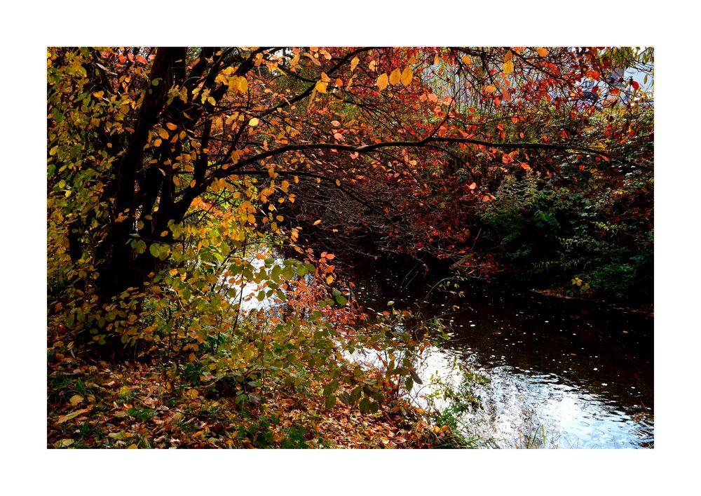 Herbst an der Usa