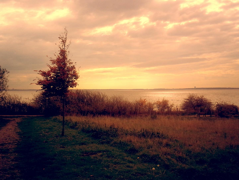 Herbst an Meer