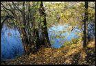 Herbst an Neckarufer