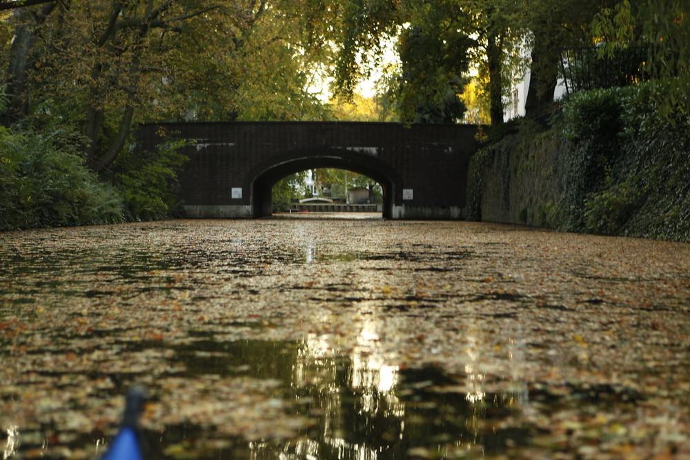Herbst auf dem Goldbekkanal