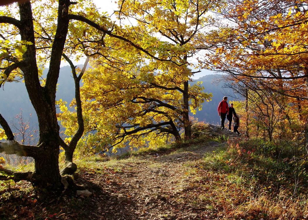 Herbst auf dem HW1 der Schwäbischen Alb