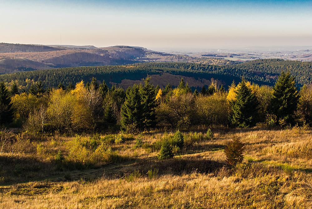 Herbst auf dem Velmerstot