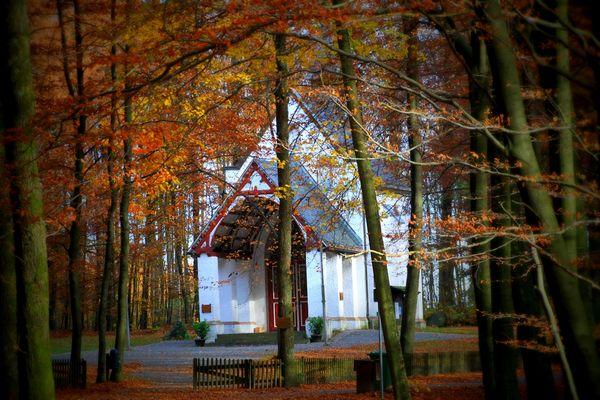 Herbst auf der Dörnschlade..