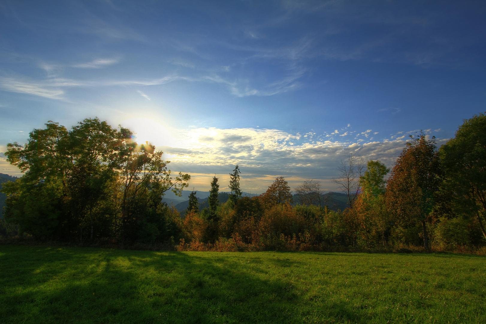 Herbst auf einer Schwarzwaldanhöhe