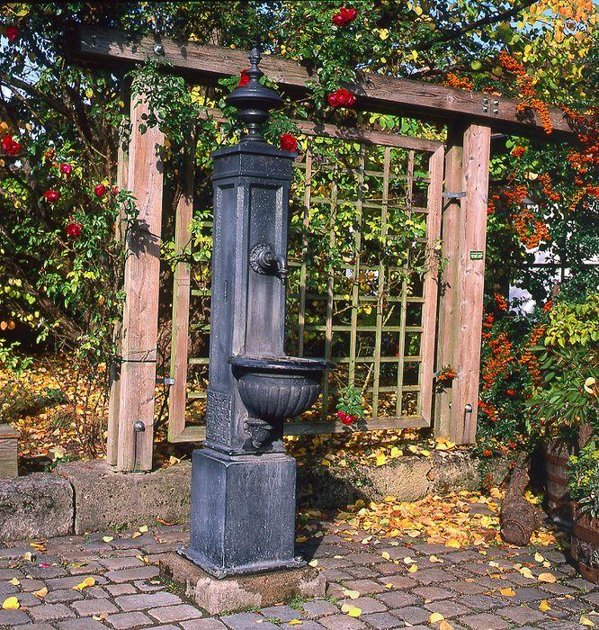 Herbst - Aufgenommen im Mittelformat