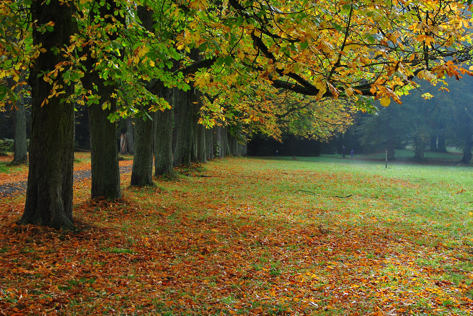 Herbst - autunno