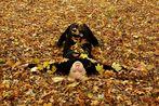 *** Herbst .... ***