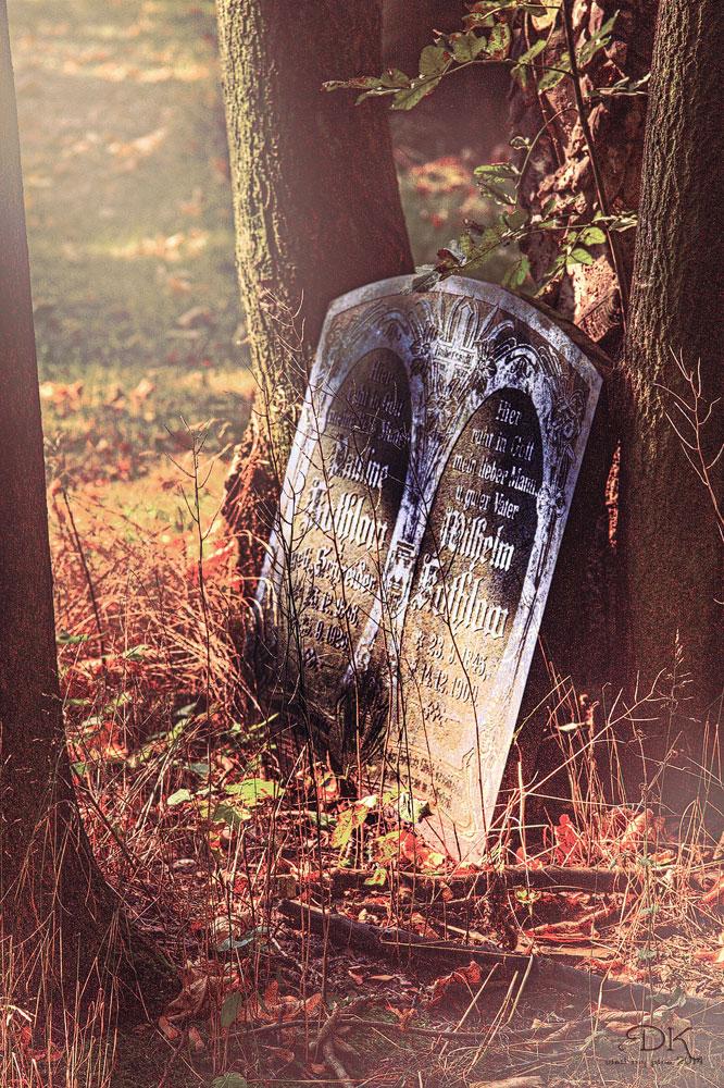 Herbst der Erinnerung