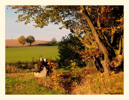 Herbst.....