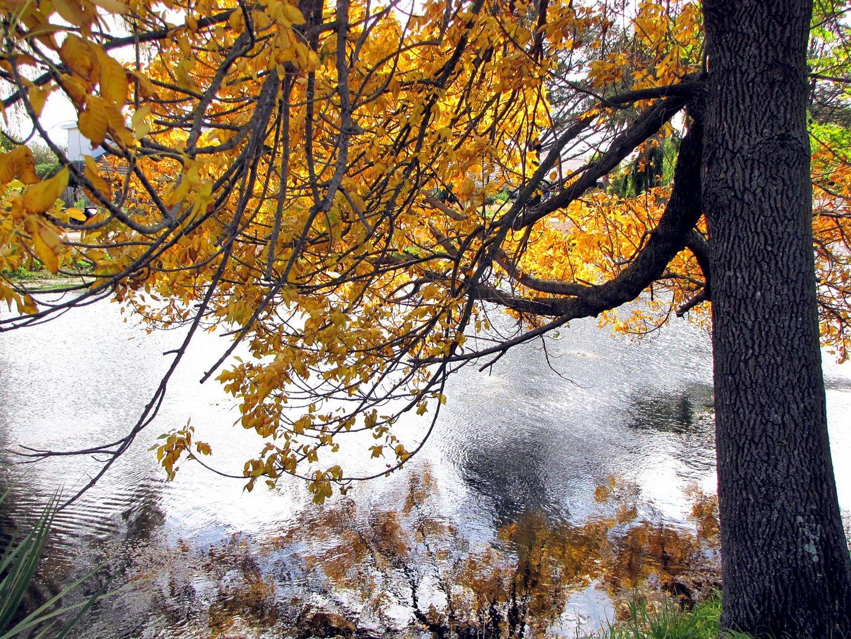 Herbst, eine schoene Jahreszeit
