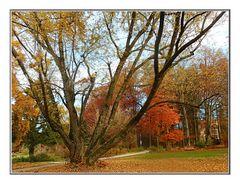 Herbst Erinnerung