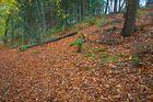Herbst Farben 2