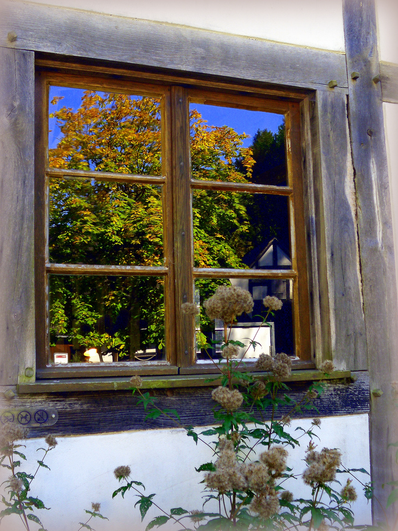 herbst fenster foto bild architektur fenster t ren architektonische details bilder auf. Black Bedroom Furniture Sets. Home Design Ideas