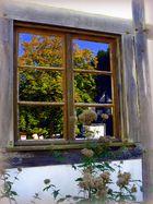 Herbst - Fenster