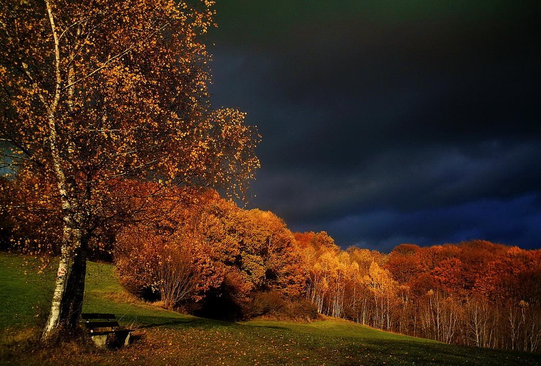 Herbst-Gewitterstimmung im Bayerischen Wald