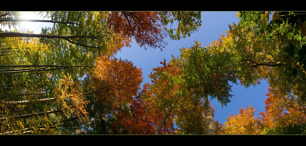 Herbst-Horizontal