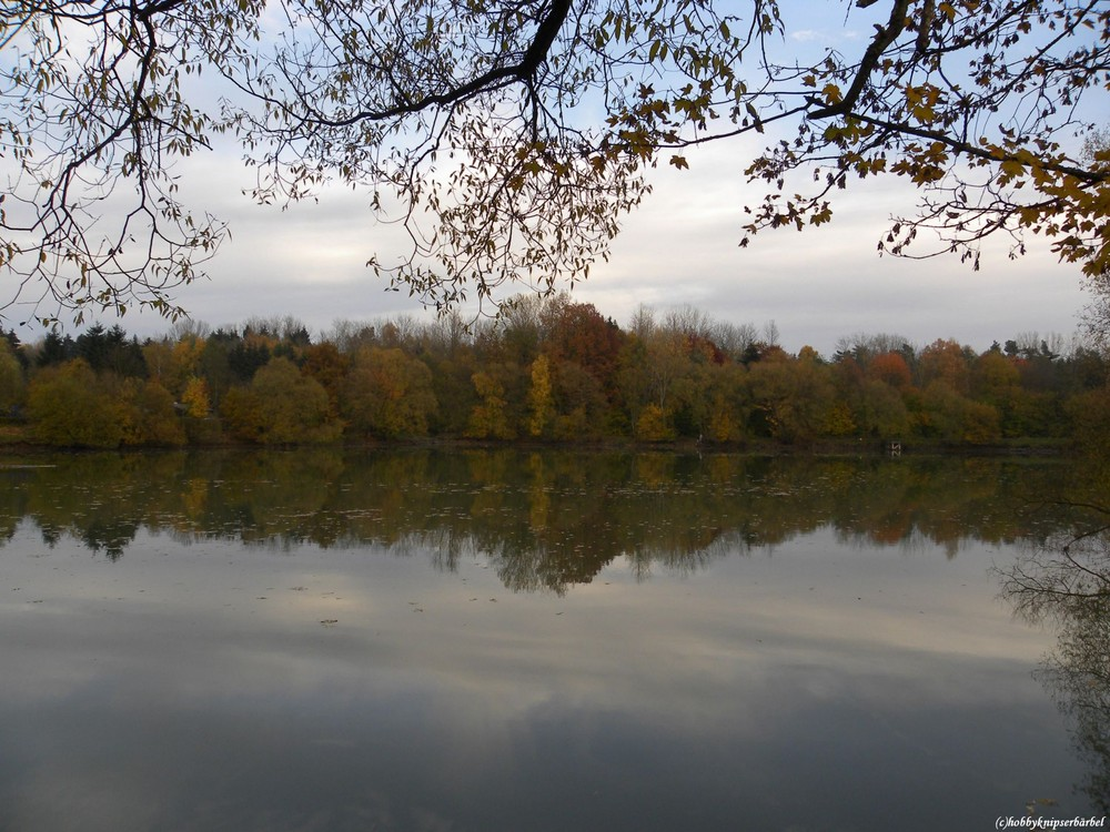 Herbst-idylle am Teich