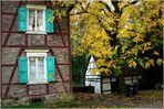 Herbst im ....