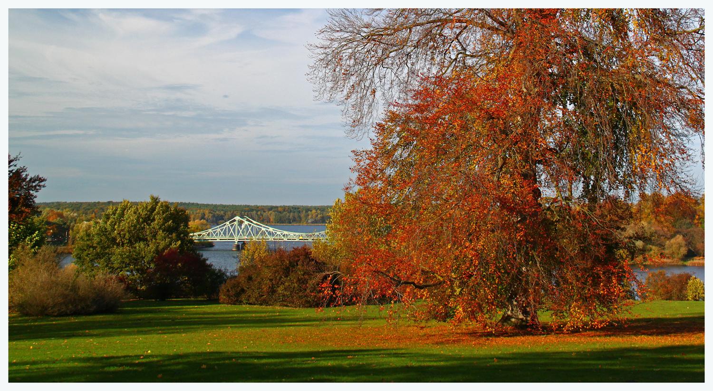 Herbst im Babelsberger Park