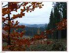 Herbst im Bayrischen Wald ...