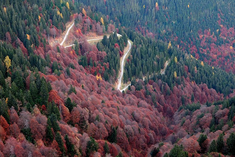 Herbst im Berchdesgadener Land