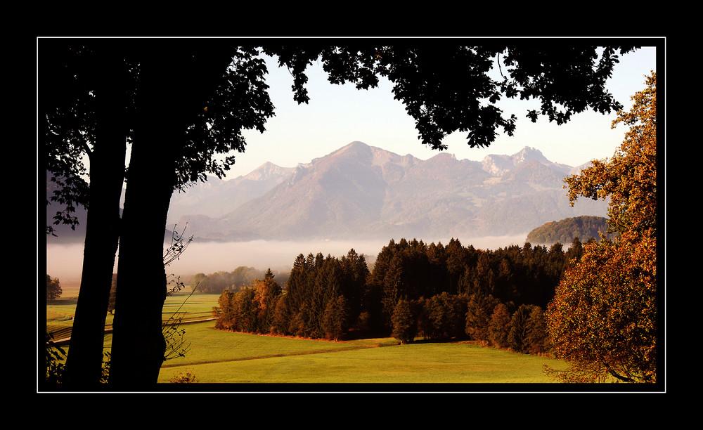 Herbst im Bergener Moos