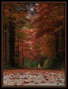 Herbst im Bodinggarben