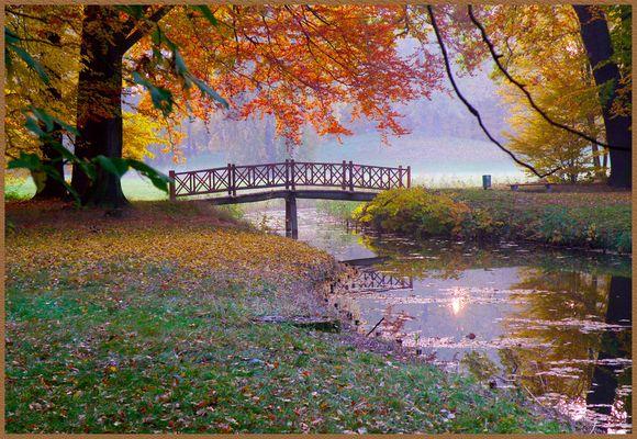 Herbst im Branitzer Park