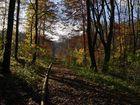 Herbst im Brunstal