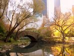 Herbst im Central Park, NY