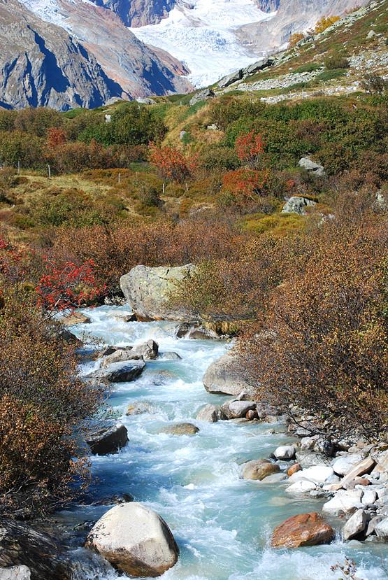 Herbst im Chelenalptal - Urner Alpen
