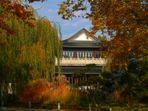 Herbst im chinesischen Garten... (1)