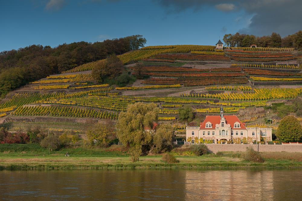 Herbst im Elbland