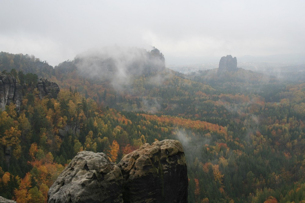 Herbst im Elbsandstein