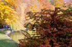 Herbst im Englischen Garten, 2009