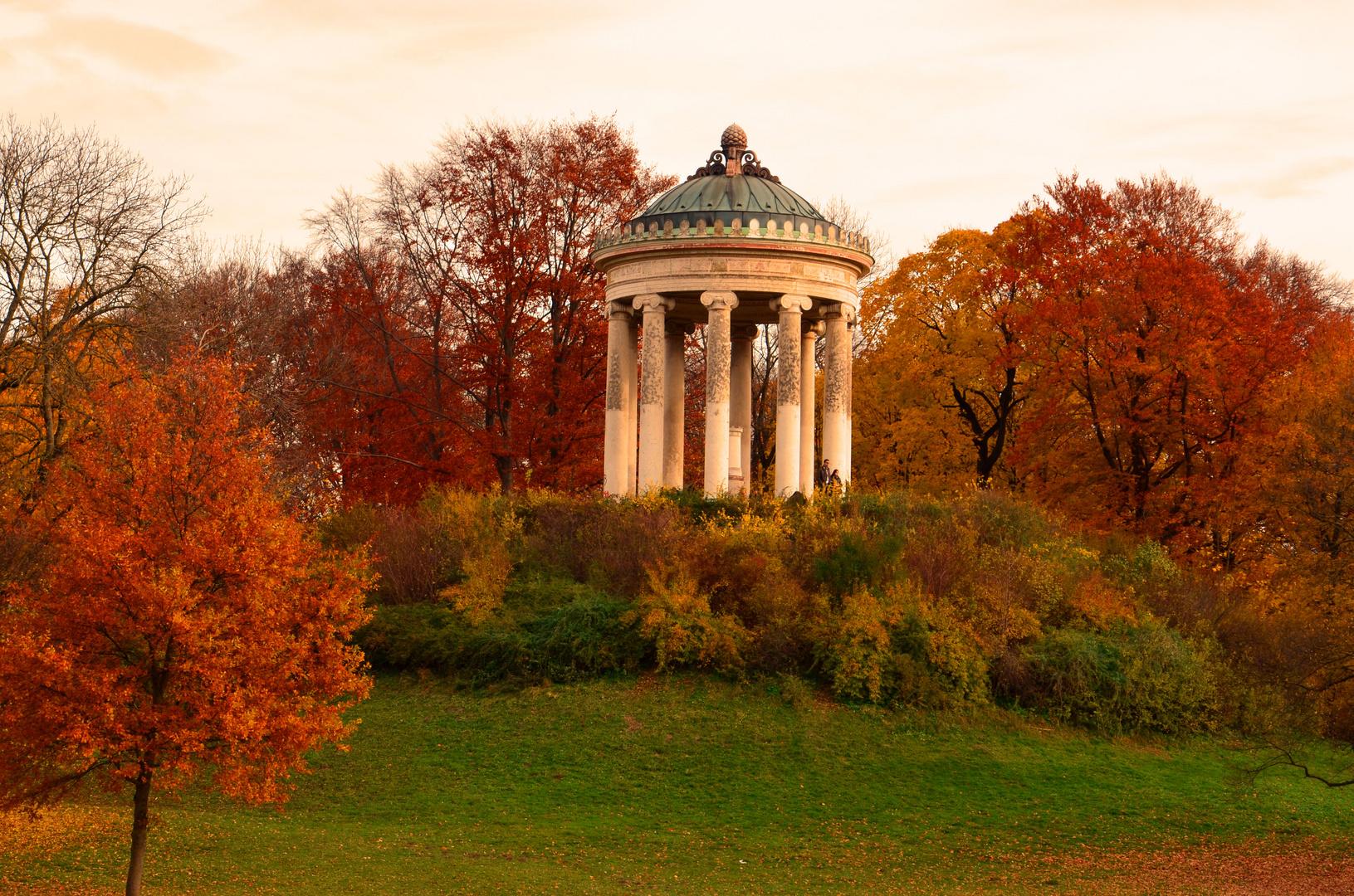 Herbst im englischen garten foto bild jahreszeiten herbst m nchen bilder auf fotocommunity - Herbst garten ...