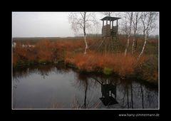 Herbst im Himmelmoor - 2