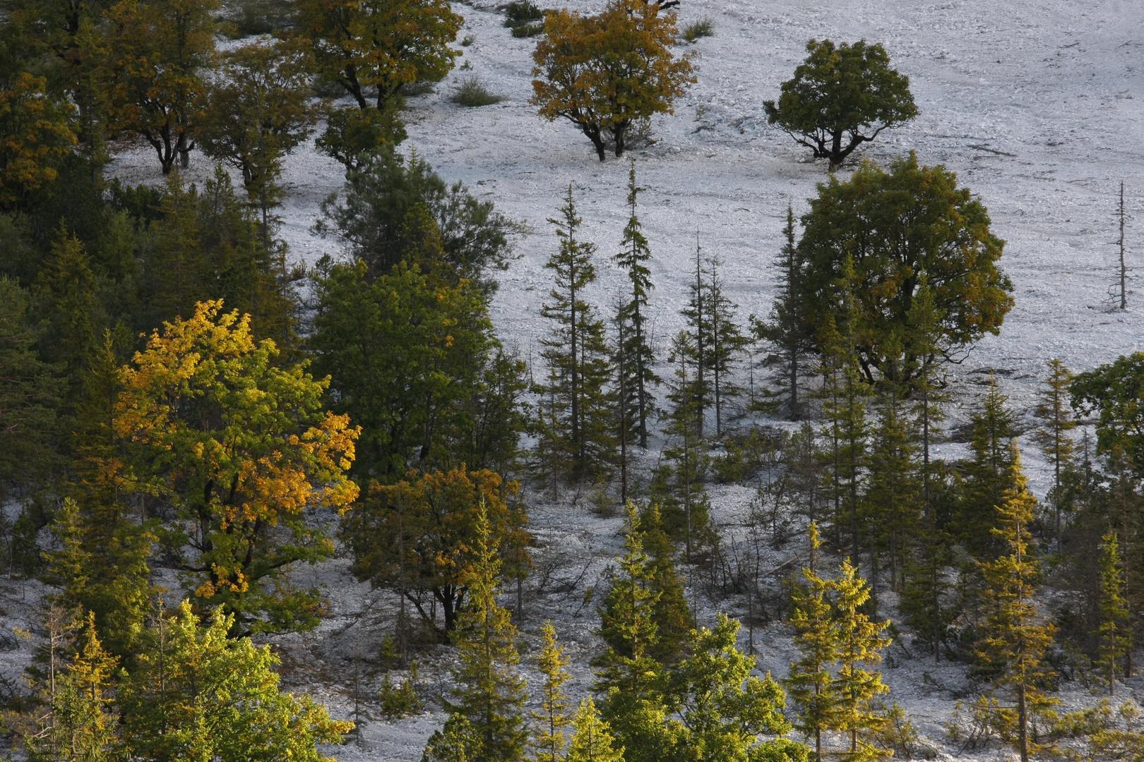 Herbst im Hinterautal, Karwendel