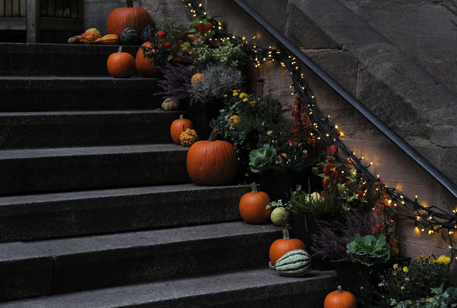 Herbst im Hinterhof.......................