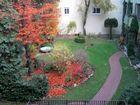 Herbst im Hinterhofgarten