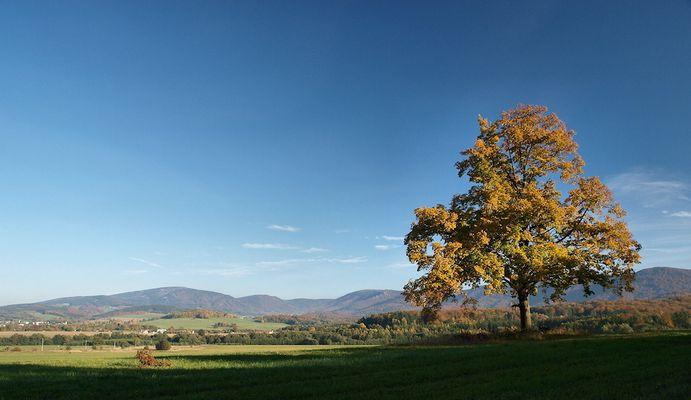Herbst im Isergebirge