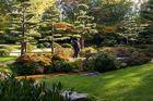 Herbst im jap. Garten