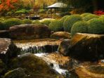 Herbst im japanischen Garten (16)