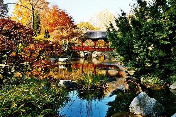Herbst im Japanischen Garten Köln/Leverkusen