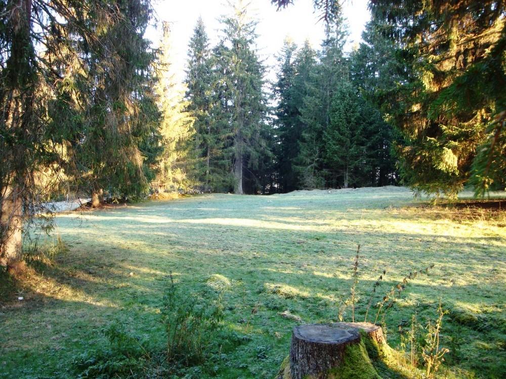 Herbst im Jura