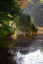 Herbst im Kaisergarten