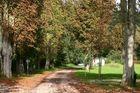 Herbst im Kaiserstuhl