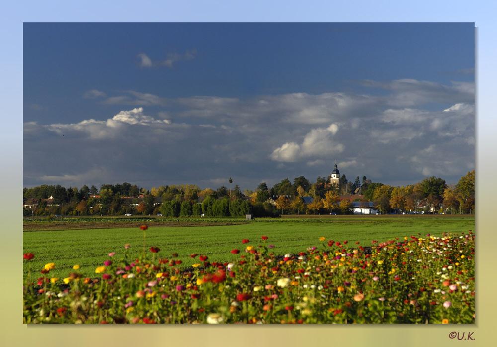 Herbst im Knoblauchsland