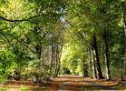 Herbst im Kölner Grüngürtel