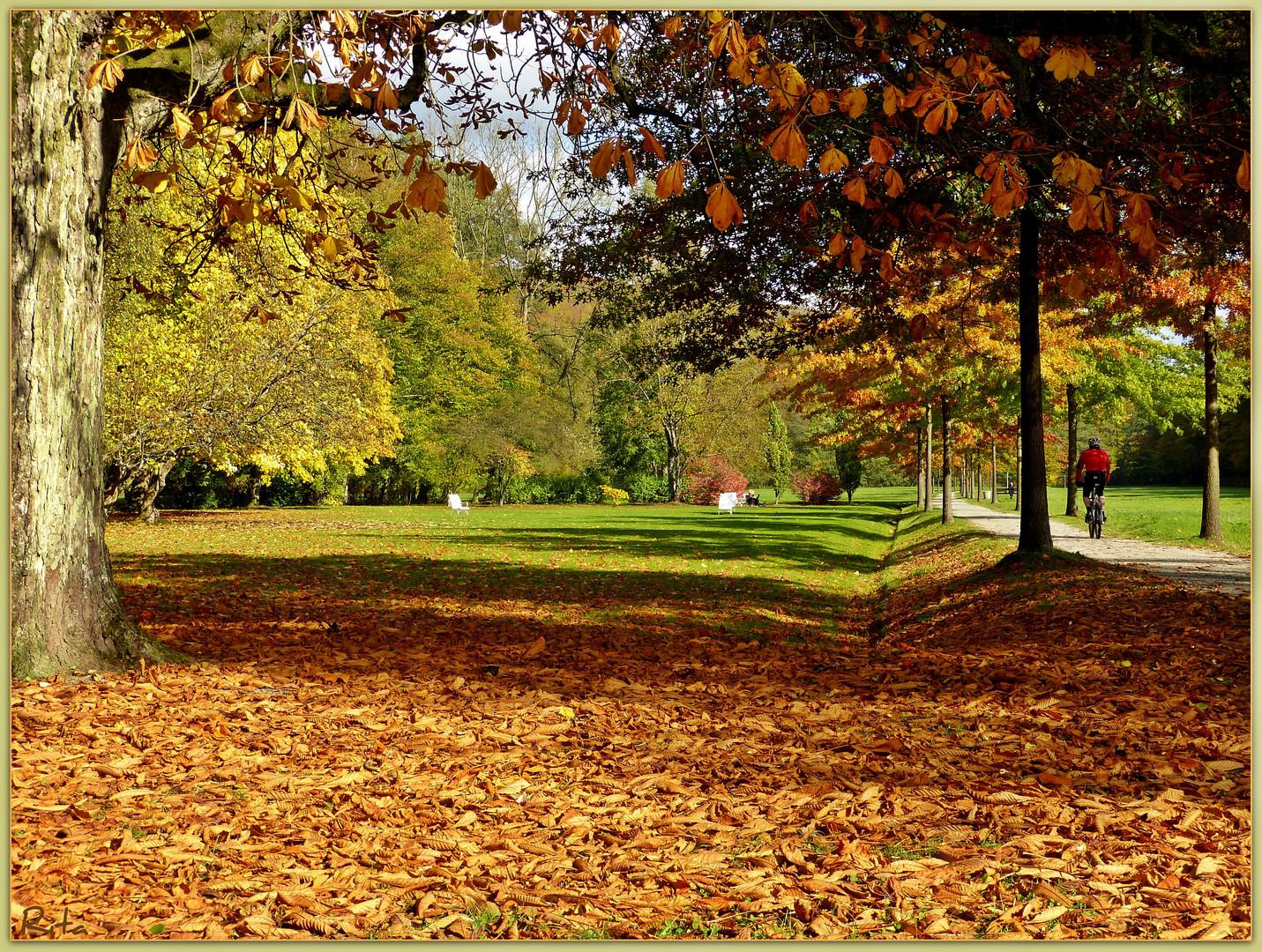 Herbst im Kurpark...